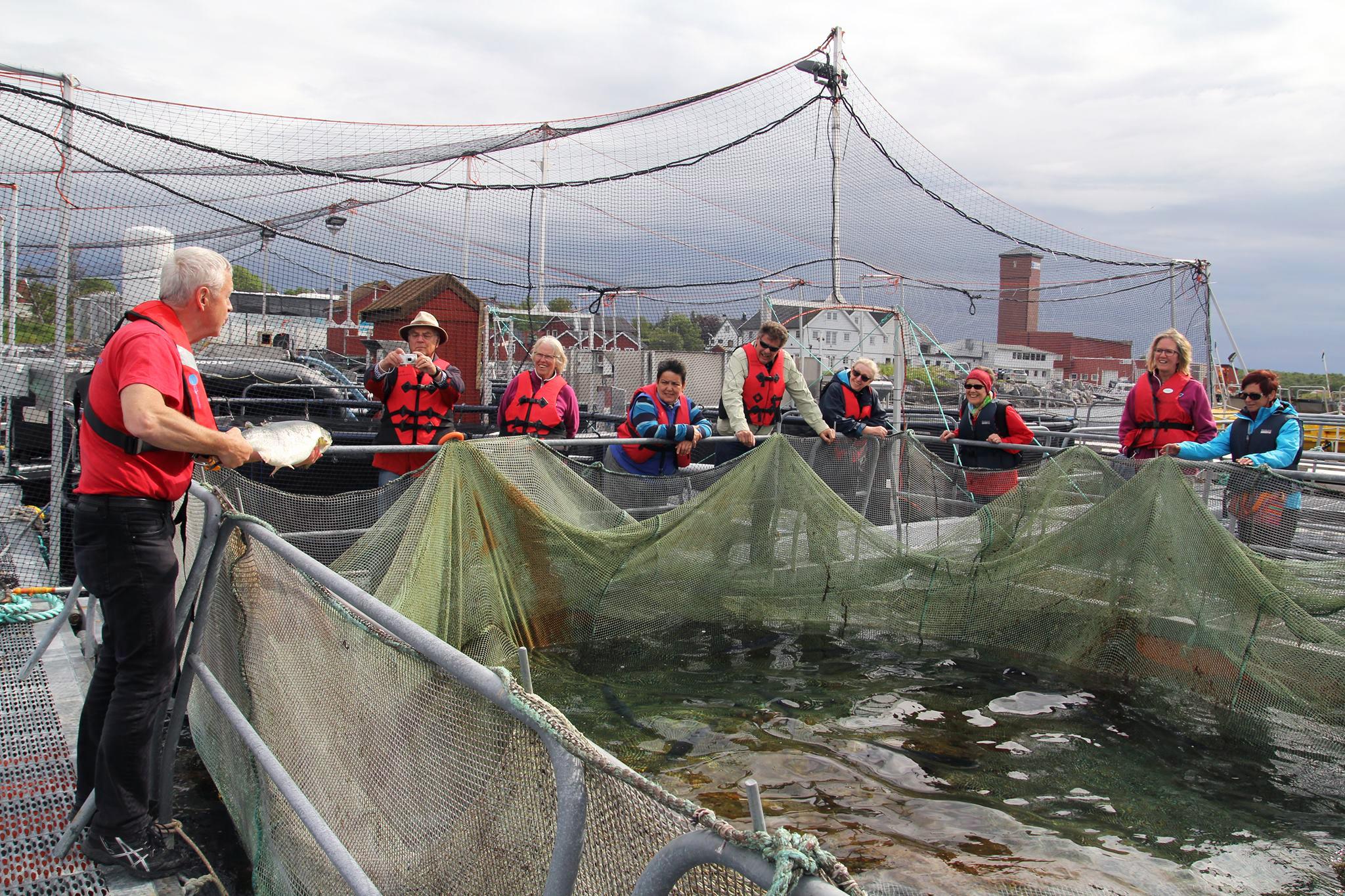 Norsk havbrukssenter har omvisninger hele året.